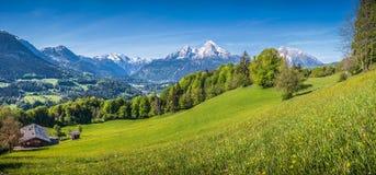 与绿色草甸、农舍和积雪覆盖的山上面的田园诗高山风景 免版税库存照片