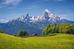 与绿色草甸、农舍和积雪覆盖的山上面的田园诗高山风景 图库摄影