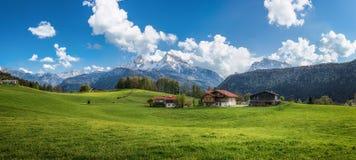 与绿色草甸、农舍和积雪覆盖的山上面的田园诗高山风景 库存图片