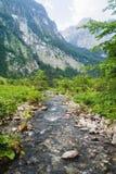 与绿色草甸的美丽的高山在后面的溪和山 贝希特斯加登国家公园 免版税库存照片