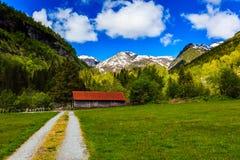 与绿色草甸的美好的自然风景,积雪覆盖的moun 库存照片