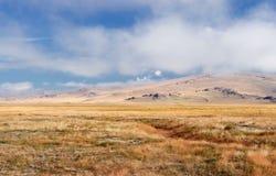 与黄色草的一个宽干草原在Ukok高原 库存图片