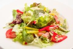 与绿色菜的沙拉 免版税库存照片