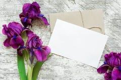 与紫色虹膜的空白的白色贺卡开花花束和信封 免版税库存照片