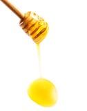 与黄色蜂蜜流动的下落的木蜂蜜浸染工被隔绝的  库存图片