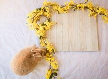 与黄色连翘属植物花和木板的复活节兔子兔子有拷贝的室的 库存照片