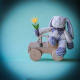 与黄色郁金香的快乐的兔子在木汽车 库存照片