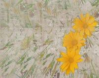 与黄色雏菊的抽象葡萄酒纹理 图库摄影