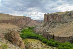 与绿色绿洲河的沙漠峡谷 库存照片