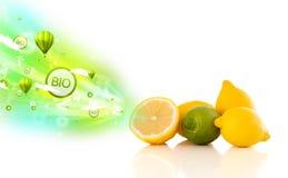 与绿色eco标志和象的五颜六色的水多的果子 免版税图库摄影