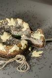 与黑芝麻籽的乳酪蛋糕在万圣夜 库存图片