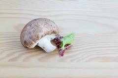 与莴苣叶子的栗子蘑菇在木头 免版税库存照片