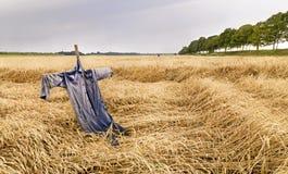 与稻草人的麦地 免版税库存图片