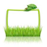 与绿草和叶子的框架 免版税图库摄影