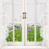 与绿草和蓝色花的开窗口在背景 库存图片