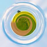 与绿草生态概念的一点行星 免版税库存照片