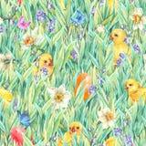 与绿草的愉快的复活节无缝的样式 免版税库存照片