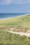 与绿草的沙丘 海滩的看法 免版税图库摄影