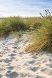 与绿草的沙丘 海滩的看法 免版税库存图片