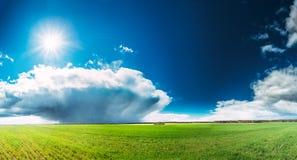 与绿草的领域或草甸风景在风景与白色蓬松云彩和发光的太阳的春天蓝天下 免版税库存照片