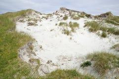 与滨草草的沙丘爆胎 免版税库存照片