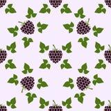 与黑莓动机的无缝的样式 库存图片