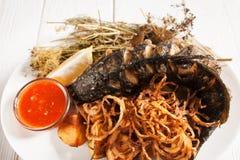 与洋葱圈和番茄酱舱内甲板位置的烤鱼 库存照片