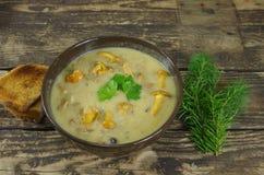 与黄蘑菇的奶油色汤 库存图片