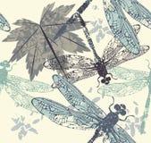 与蜻蜓、槭树叶子和de的美好的无缝的样式 图库摄影