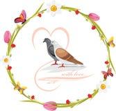 与蝴蝶和爱恋的鸠的春天花圈 免版税图库摄影