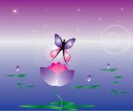 与蝴蝶和莲花flowe的抽象背景 免版税库存图片