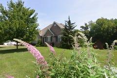 与蝴蝶灌木丛的家庭场面 库存照片