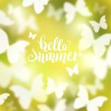 与蝴蝶的光亮的夏天背景 皇族释放例证