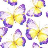 与蝴蝶的惊人的五颜六色的背景 免版税库存图片