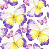 与蝴蝶的惊人的五颜六色的背景 库存照片