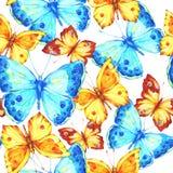 与蝴蝶的惊人的五颜六色的背景 库存图片