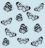 与蝴蝶的无缝的样式与透明翼 库存照片
