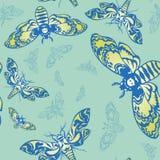 与蝴蝶的模式 库存图片