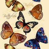 与蝴蝶的美好的无缝的墙纸样式 免版税图库摄影