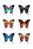 与蝴蝶的色的抽象背景。 免版税图库摄影