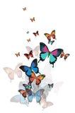 与蝴蝶的色的抽象背景。 库存照片