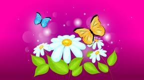 与蝴蝶的雏菊 库存例证