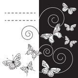 与蝴蝶的Monohrome背景。传染媒介illustration/EPS 8 免版税库存图片