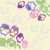与蝴蝶花和郁金香的背景 免版税库存图片