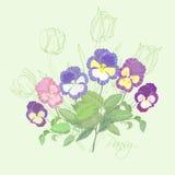 与蝴蝶花和郁金香的花束 库存图片