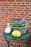 与蝴蝶花和金瓜的庭院静物画 免版税图库摄影
