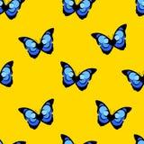 与蝴蝶蓝色morpho的夏天样式在黄色背景 向量 库存照片