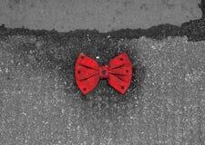 与说谎在路面的黑小点的红色蝶形领结 库存照片