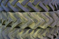 与绿霉的老轮胎踩 免版税图库摄影