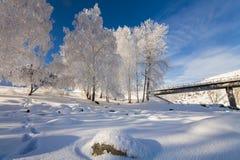 与结霜的树的美丽如画的多雪的风景 库存图片
